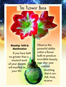 Flower Bulb Card